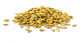 Seminte de in auriu