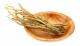 Pulbere de Ginseng