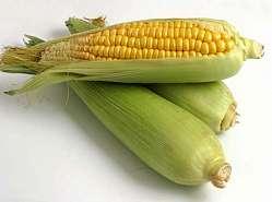 Organic ethanol