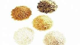 Gris din orez