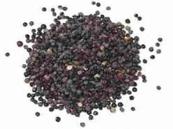 Quinoa Neagra