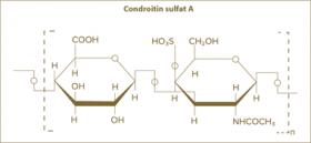Condroitina