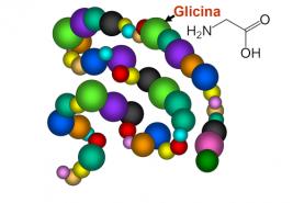 L-Glicina