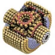 Molecule Redox