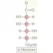 D-Manoza