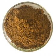 Epimedium Brevicorum