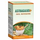 Astragalus EGCG Rezveratrol 100 cps
